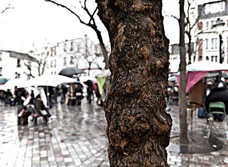 I luoghi di Modigliani tra Livorno e Parigi - Place du Tertre, Paris