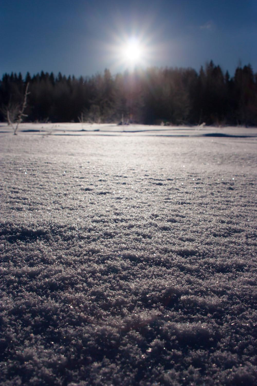 Мороз и солнце день чудесный!