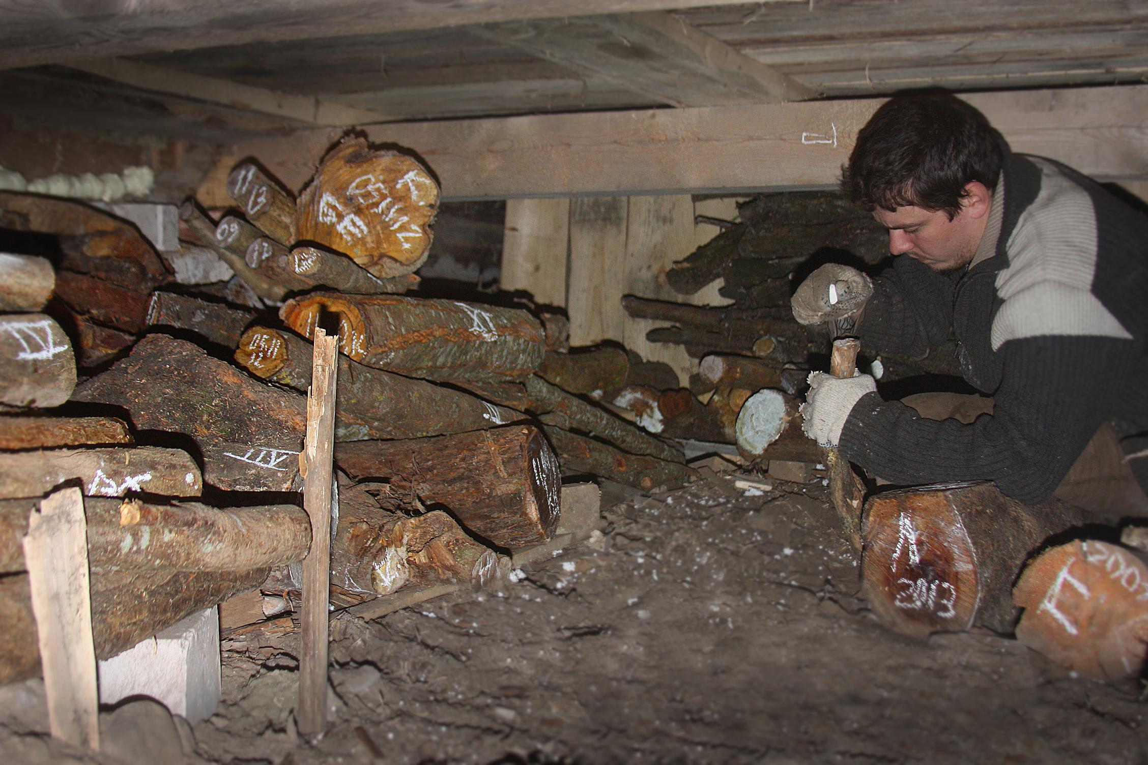 Запасаемся древесиной