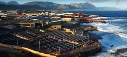 Морская ферма в ЮАР