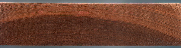 Спил,красное,дерево, махагони, древесина, Тайланд, лаху, путешественник, Foma07, дрова, интересно, статья, реммани, ядровая, древесина, заболонь, годичные, кольца
