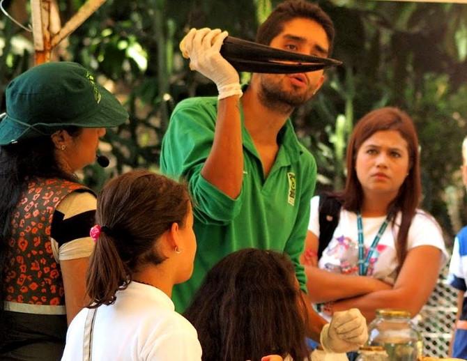 Vive las Vacaciones Creativas del Zoológico Santa Fe