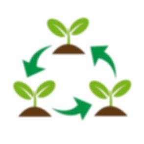 plant-tree-icon-vector.jpg