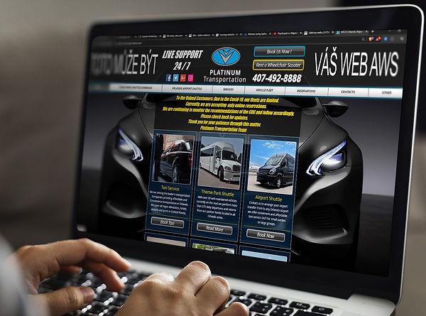 profesionální webové stránky