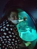 aquarium laetita.jpeg