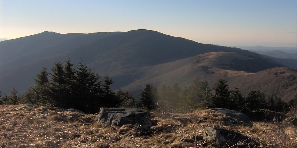 3:00 PM Geology of Roan Mountain - Mick Whitelaw and Jeremy Stout (9 participants maximum)