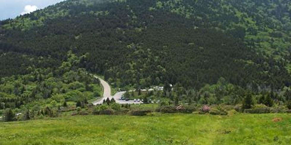 1:30 p.m. Spruce-Fir Forest Exploration – Joe McGuiness  – (9 Adventurers maximum)