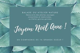 Bon cadeau : balade botanique, conférence aromathérapie, e-atelier citrons-confits...
