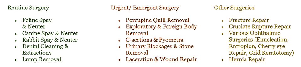 Surgery Chart List for Website.png