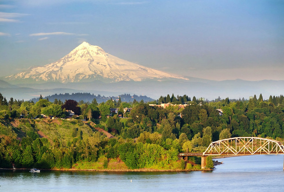 Portland Steel Bridge and the Mt hood.jp