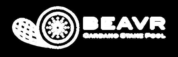 BEAVR Cardano Stake Pool-B8_edited.png