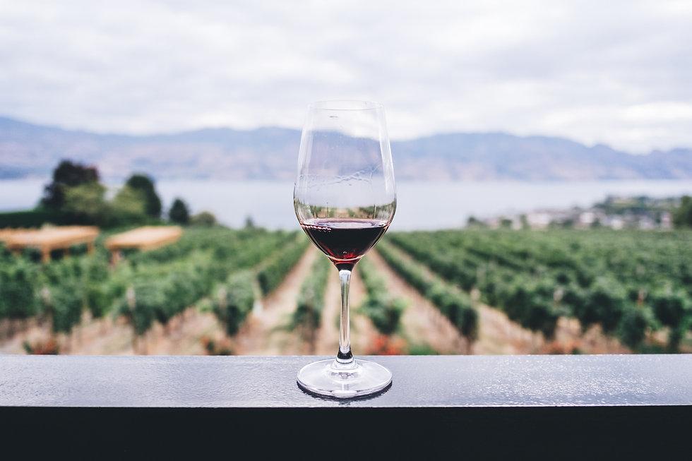 verre à dégustation de vin