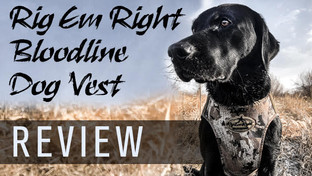 Rig Em Right Bloodline Elite Dog Vest Review