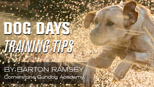 Dog Days Training Tips with Barton Ramsey