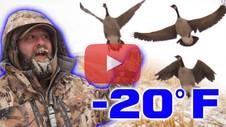 -20 Below Zero - A Late Season Goose Hunt