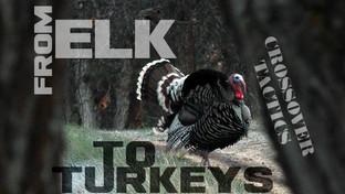 FROM ELK TO TURKEYS: Crossover Tactics