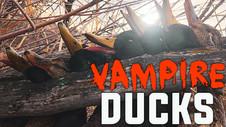 Vampire Ducks!