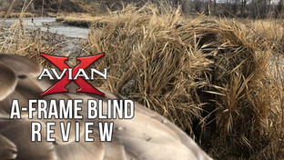 Avian X A-Frame Blind Review