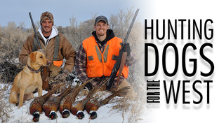 Hunting Dogs for the West