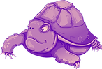 tortoise-4228370_1280_edited.png
