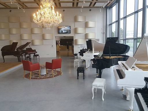 Petrof Gallery, 360 video