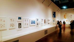 VR akce, výstavy, galerie