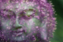 buddha-1488173_1920.jpg