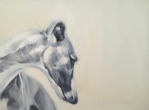Sighthound £150