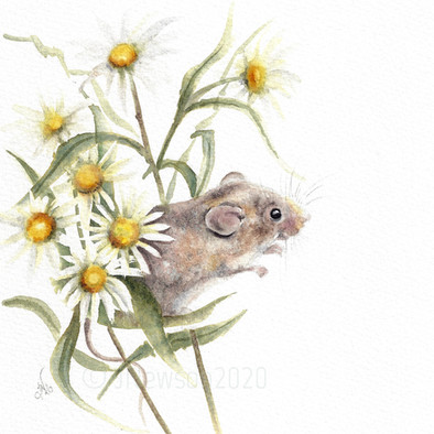 **SOLD** Little mouse