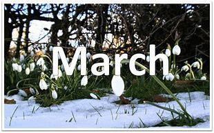 3月のアノマリー トレードシナリオ