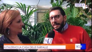 Buongiorno Regione Sicilia dedica alla Casa delle Farfalle di Palermo uno speciale