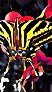 #PRISMA #mania #prismacolor _#primania #