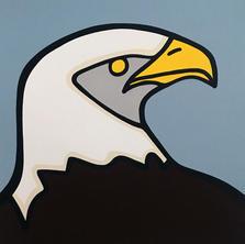 Bald Eagle  •  24x24