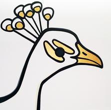 WhitePeacock  •  36x36
