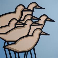 Shore Birds  •  30x30