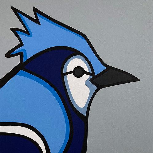 "Blue Jay    •      24"" x 24"""