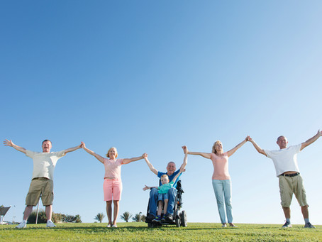 What are the 8 domains of NDIS?