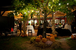 vineyard wedding locations