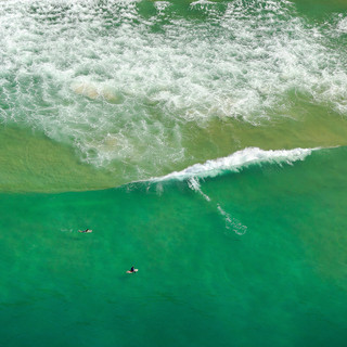 Surfing Day V