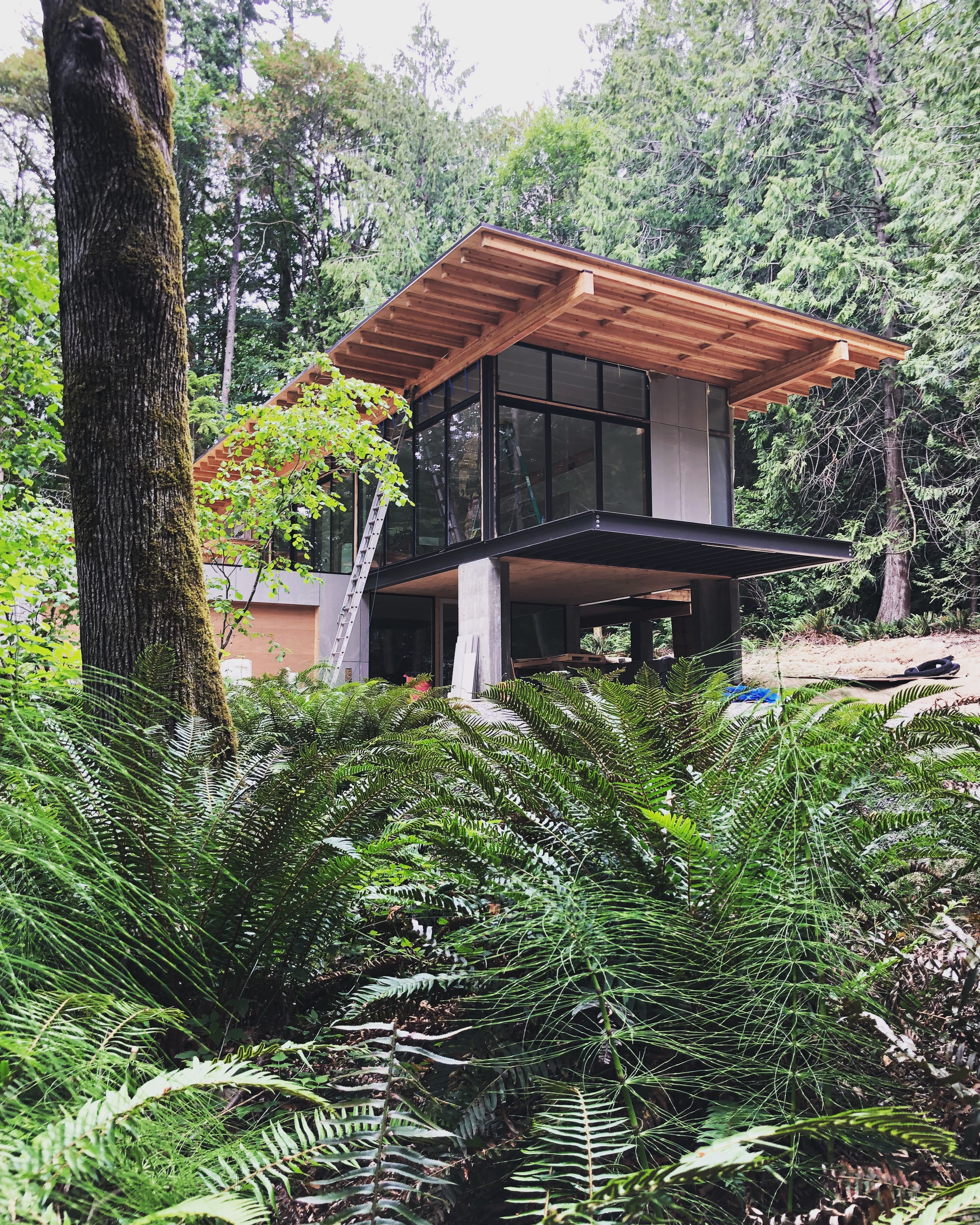 Forest House - Eerkes Architects - Juara