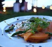 Sweet and Salty Catering Event Food Bike Fingefood Dinner am See