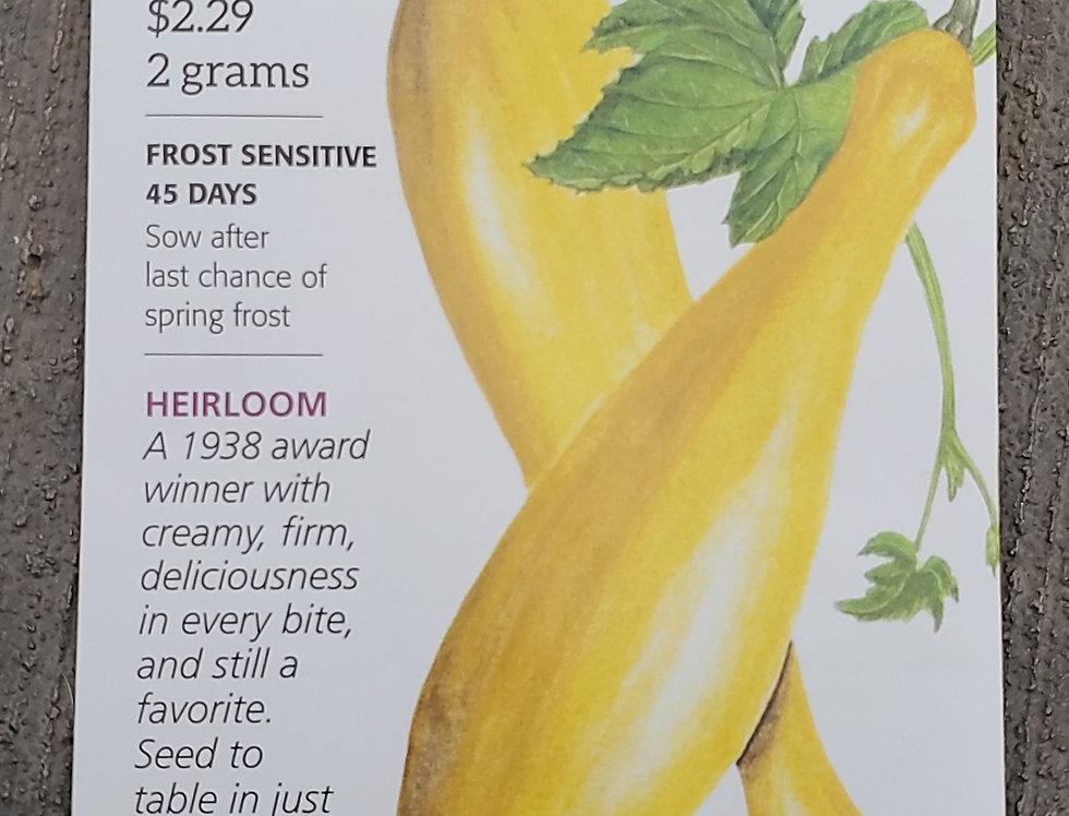 Squash Summer Early Prolific Straightneck Organic
