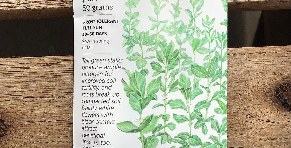Cover crop fava bean sweet lorane improved big pack