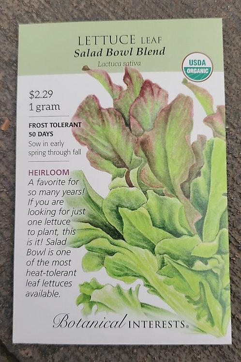 Lettuce leaf Salad Bowl Blend Organic
