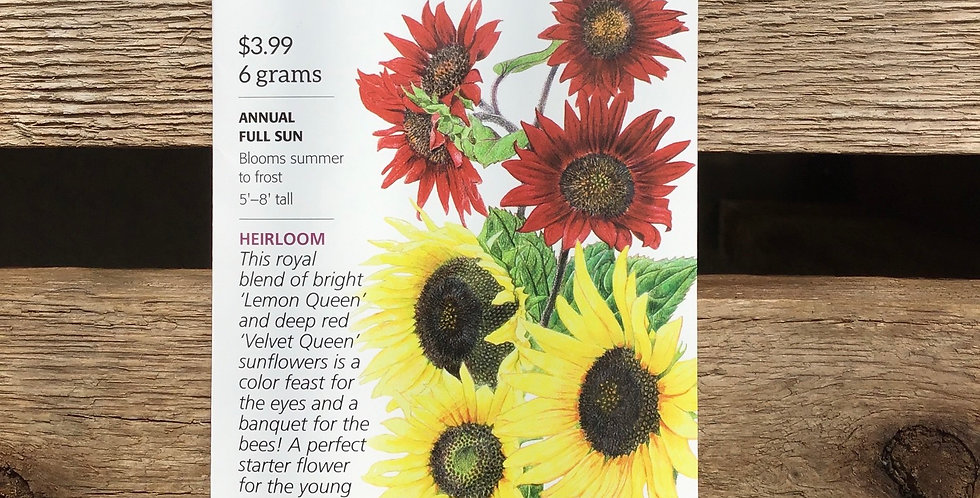 Two queens sunflower big pack