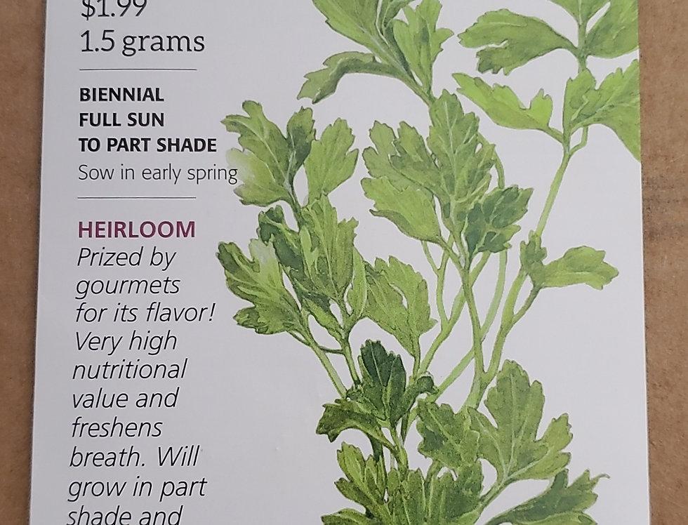 Parsley Flat Leaf Organic