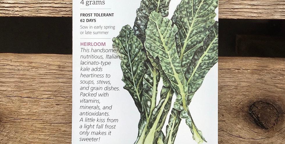 Kale Nero Toscana big pack