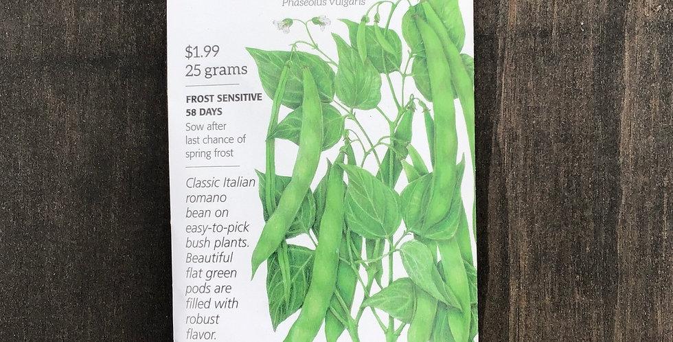 bean bush Roma 2