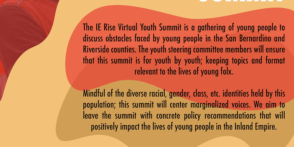 Steering Committee Application Form (Virtual Youth Summit)