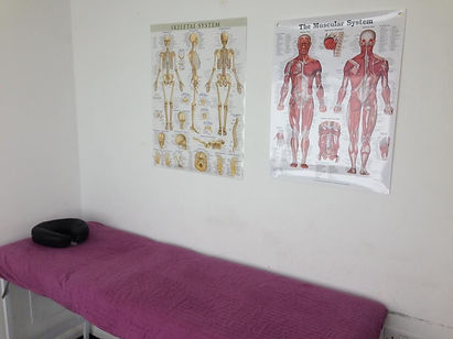 My therapy room, the muscle system and the skeletal system.